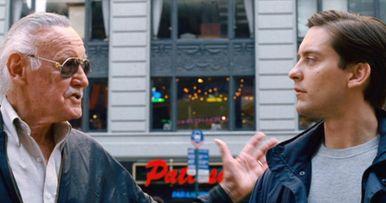 Why Sam Raimi Originally Said No to Stan Lee Cameo in Spider-Man