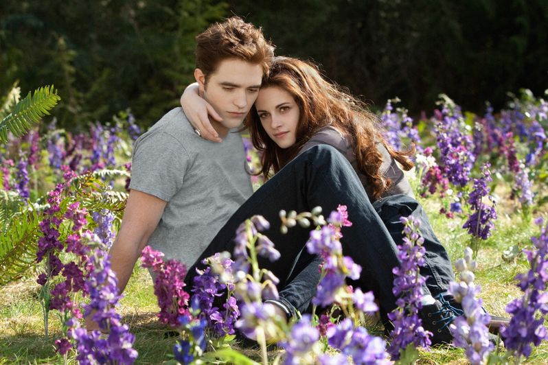 The Twilight Saga Breaking Bad Part 2 Bella and Edward Photo