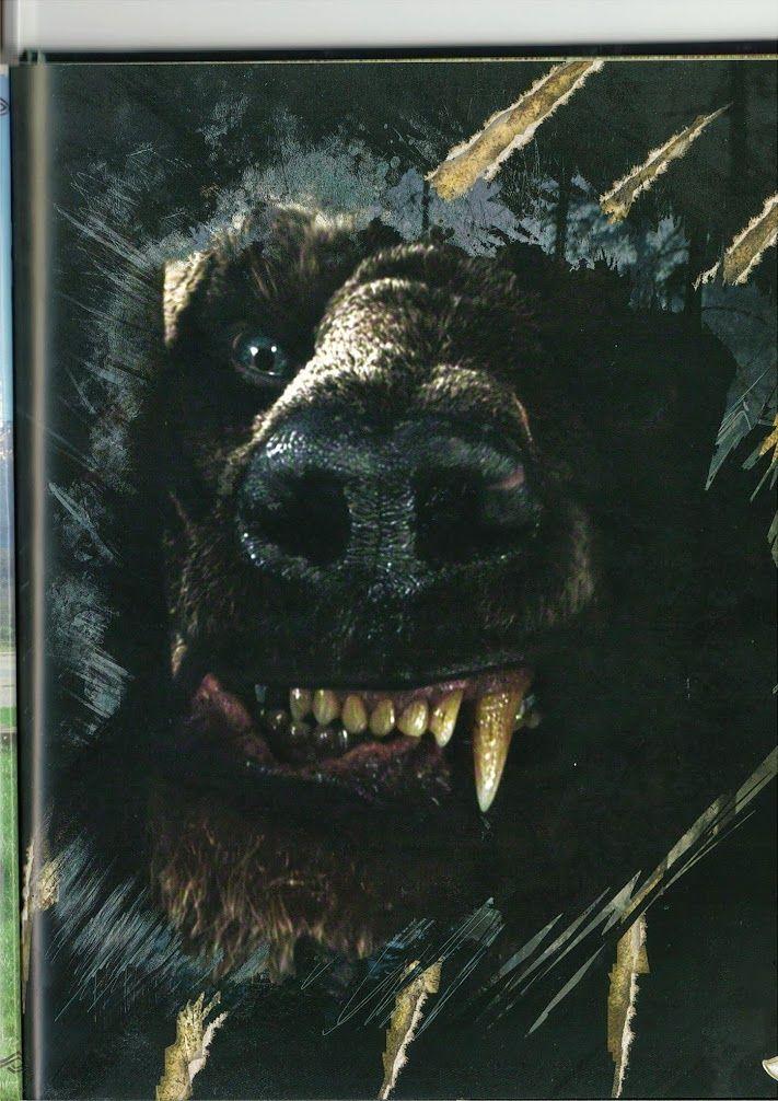 Te Hobbit Desolation of Smaug Beorn photo