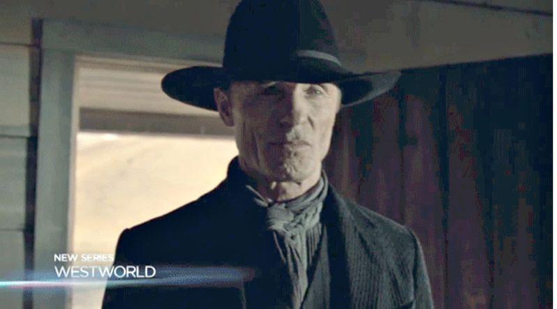 <strong><em>Westworld</em></strong> Ed Harris