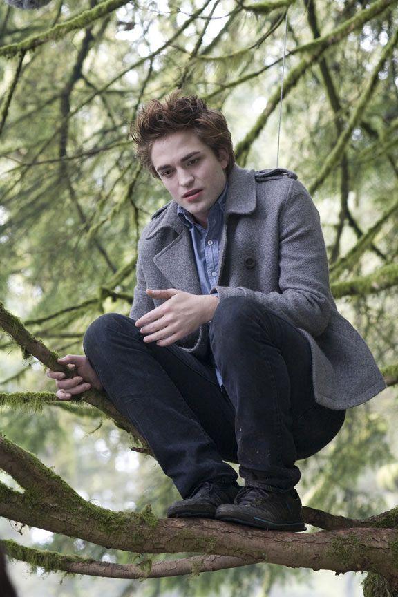 <strong><em>Twilight</em></strong> Image #2