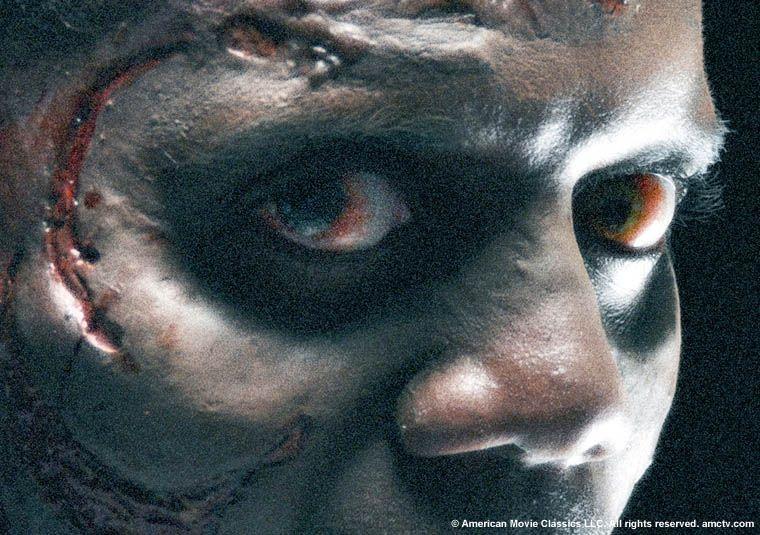 <strong><em>The Walking Dead</em></strong> Image #5