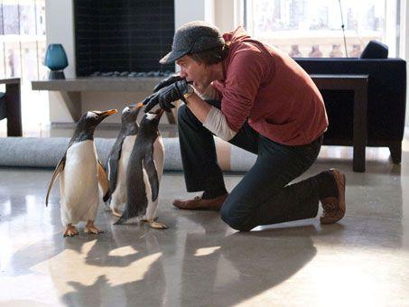 Jim Carrey in <strong><em>Mr. Popper's Penguins</em></strong> #4