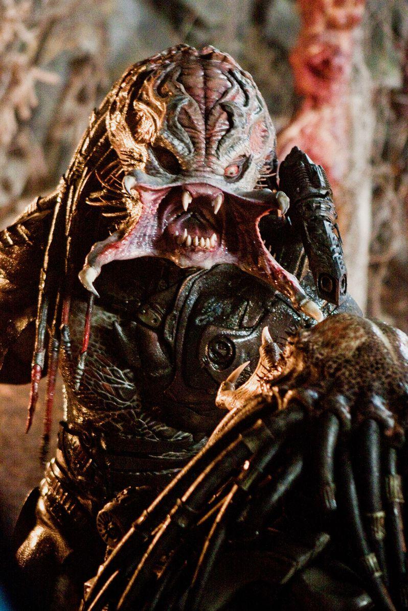 <strong><em>Predators</em></strong> Mr. Black Image #3