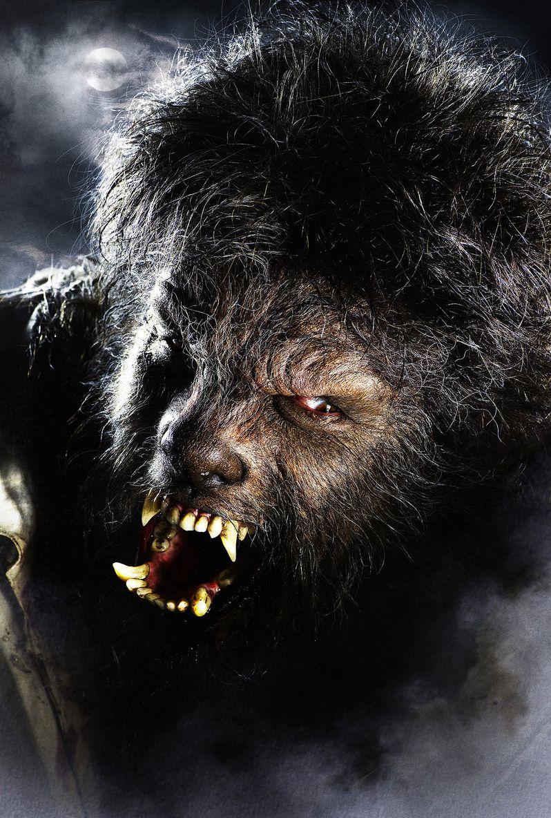 Benecio Del Toro as the Wolf Man