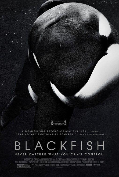 <strong><em>Blackfish</em></strong> Poster