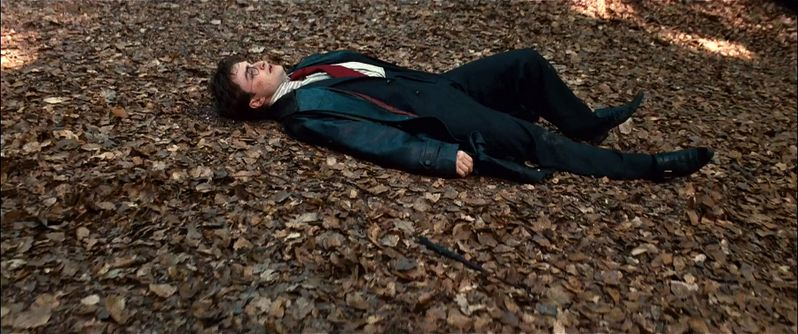 Daniel Radcliffe in Harry Potter and the Deathly Hallows