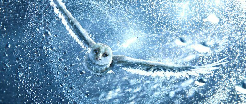 <strong><em>Legend of The Guardians: The Owls of Ga'Hoole</em></strong>