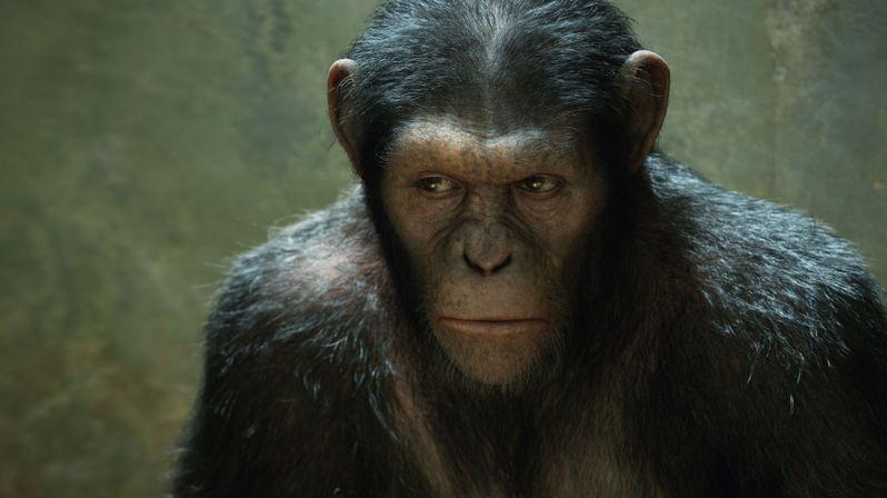 Caesar played by Andy Serkis