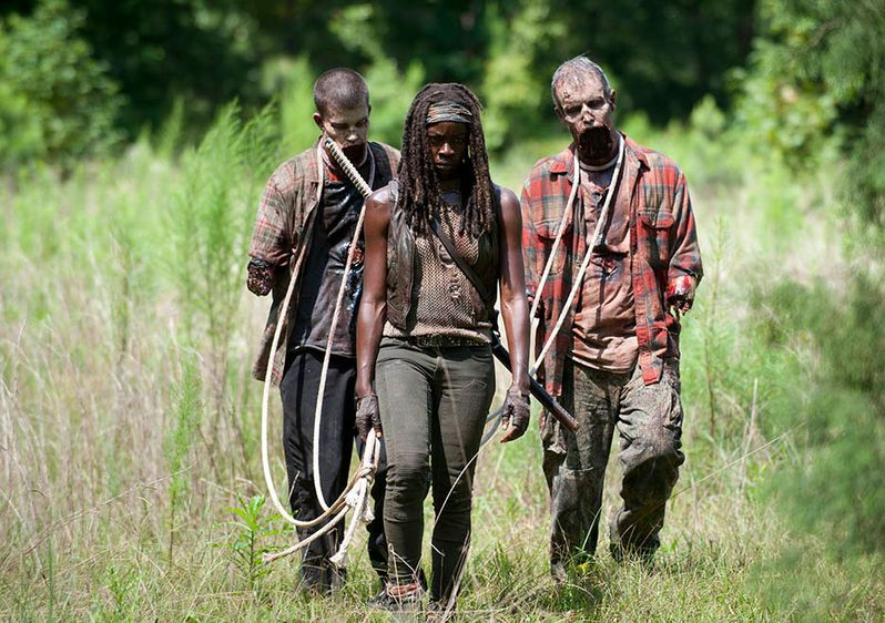<strong><em>The Walking Dead</em></strong> After Photo 1