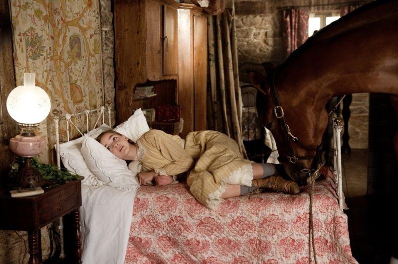 <strong><em>War Horse</em></strong> photo 4