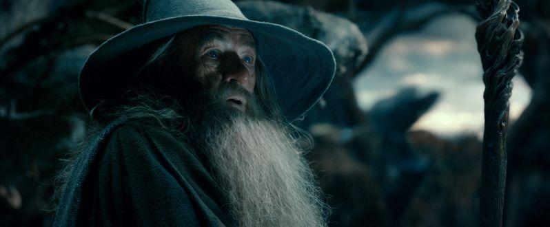 <strong><em>The Hobbit: The Desolation of Smaug</em></strong> Photo 7