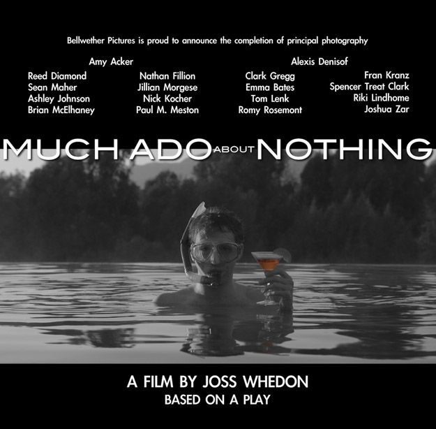 <strong><em>Much Ado About Nothing</em></strong>