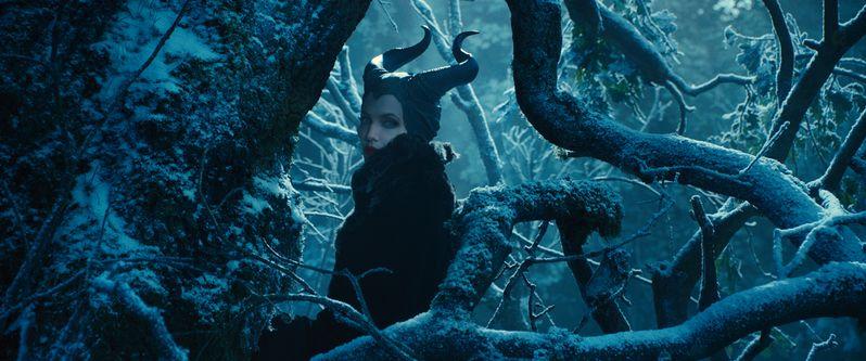 <strong><em>Maleficent</em></strong> Photo 3