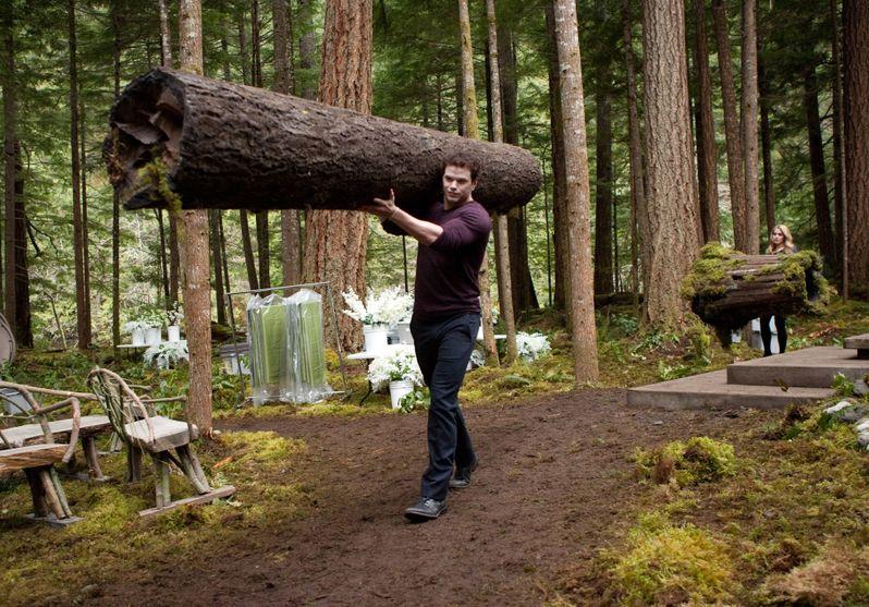 <strong><em>The Twilight Saga: Breaking Dawn - Part 1</em></strong> Photo #6