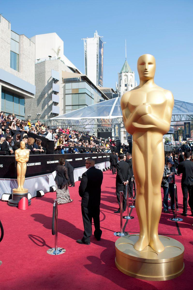 2012 Academy Awards Red Carpet Arrivals photo 6