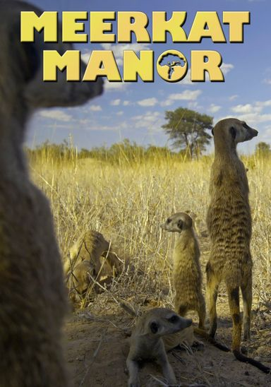 Meerkat Manor (2005)
