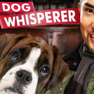 Dog Whisperer with Cesar Millan (2004)